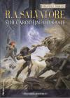 Forgotten Realms: Žoldáci 2 - Slib čarodějného krále - Salvatore R. A. (Promise of the Witch-King)